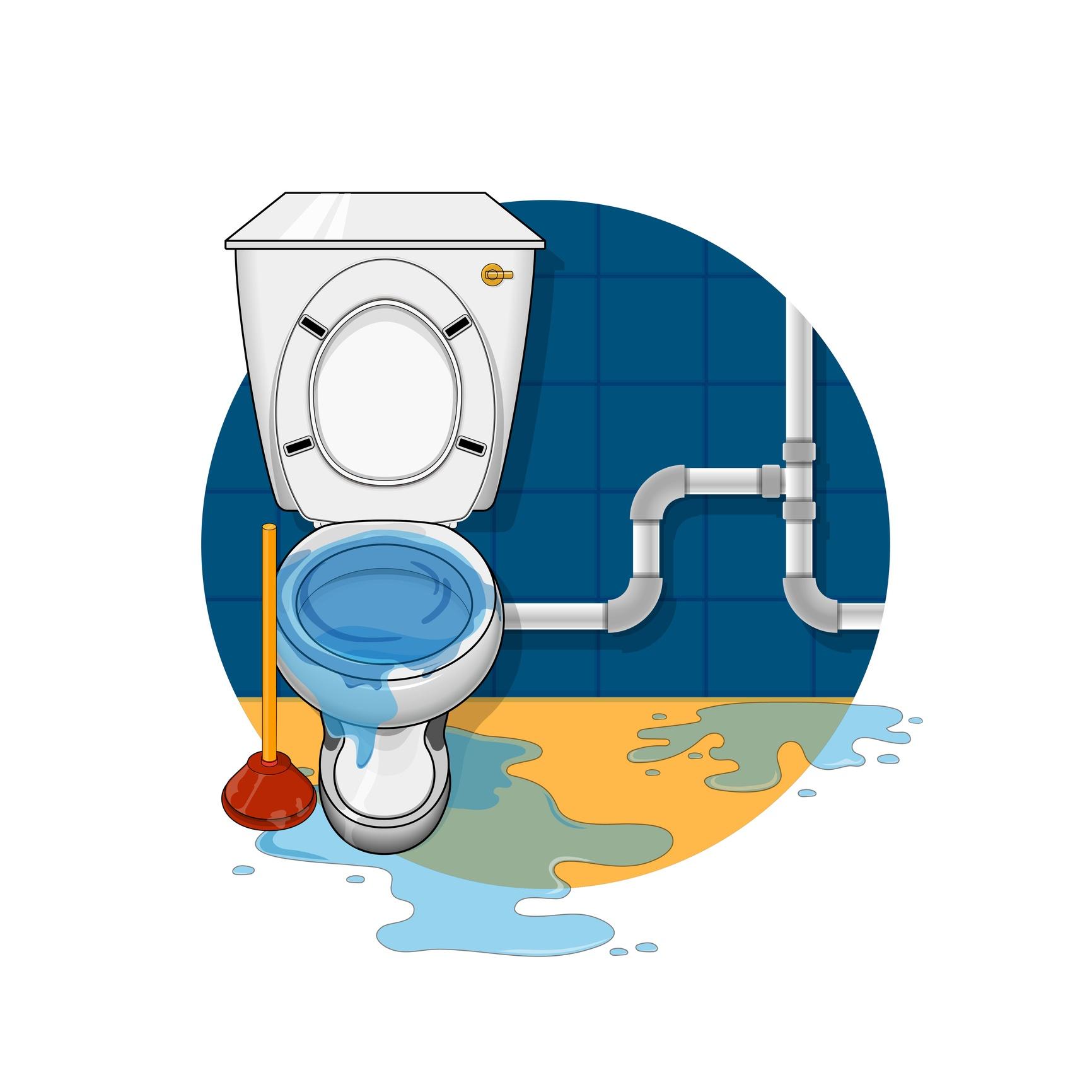overflowing toilet
